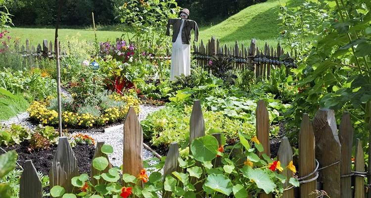 La permaculture, toute une philosophie..de vie! Un article et une vision de l'avenir passionnants, à découvrir à mon avis !
